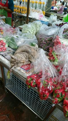 Flower market Chinatown. Bangkok