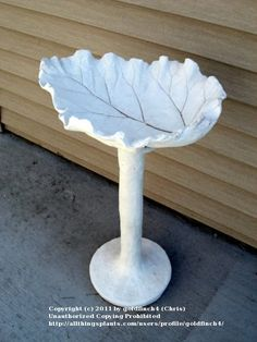 Quickwall concrete leaf bird bath/feeder - made by painting quickwall over the leaf, pvc pole covered with chickenwire, etc. Instructions a few posts down, the whole thread has lots of good info +++++++++++++++++ AllThingsPlants.com forum #concrete #cast #leaf #birdbath