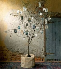 """Nice idea for a wedding.maybe a bit more """"polished"""". Arbre photos great idea for a special birthday party to show off old pics Modern Christmas, White Christmas, Christmas Time, Xmas, Family Tree With Pictures, Old Pictures, African Christmas, Rama Seca, Family Tree Chart"""