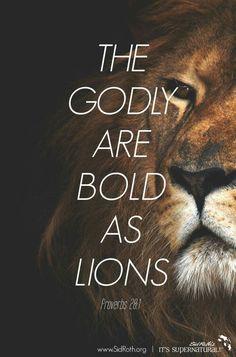 .bold as a lion