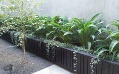 Back Gardens, Small Gardens, Outdoor Gardens, Side Garden, Garden Beds, Garden Walls, Balcony Garden, Hanging Plants Outdoor, Plants Indoor