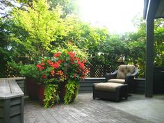 A large container garden planted for shady conditions. The containers create focus and help define the space.