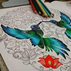 Secret Garden hummingbird