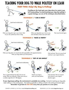 Useful Dog Obedience Training Tips – Dog Training Background Dog, Dog Hacks, Dog Training Tips, Potty Training, Pitbull Training, Puppy Leash Training, Training Classes, Dog Obedience Training, Training Collar