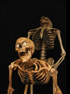 They're boning :)  I apologize for the horrible pun. <-- omg pinning just for the comment