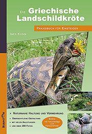 Startseite - Die artgerechte Haltung der Griechischen Landschildkröte