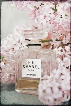 Chanel vintage pink perfume original fine art photo pink lilacs pastel feminine 8x10 wall decor on Etsy, $25.00