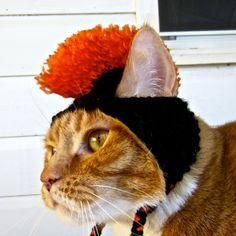 What cat doesnt need a mohawk hat?! This adorable cat hat / costume was made with black and orange acrylic yarns. Great for a gift or as a treat for