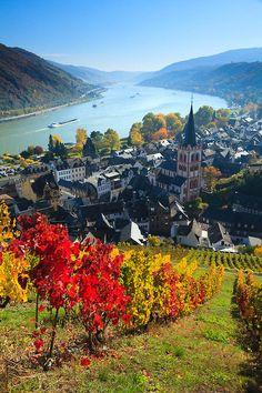 Bacharach, Rheinland-Pfalz, Southwestern Germany