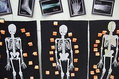 Skeleton Human Model Skull Full Body Mini Figure Toy Phone Hanger Halloween Refreshing And Enriching The Saliva Gags & Practical Jokes