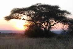 img_1398-desktop-resolution Tanzania, Photo Galleries, Desktop, Africa, Celestial, Sunset, Gallery, Places, Outdoor
