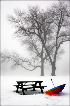 Multi-colored umbrella by picnic table in fog
