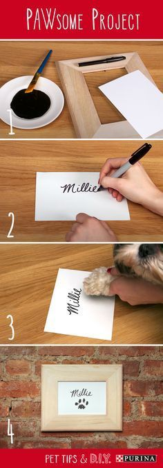 DIY Pet Stuff...  Looking for a DIY pet art project? All you need is pet safe paint and a frame for this quick and easy diy wall art project! This adorable piece of pet art would go perfectly above a food bowl, dog bed, or litter box!