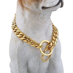 "Gold Tone Designed Dog Collar, 22"" 15MM Wide Fancy Metal Slip Chain - Cool   Best for Large Dogs: Pitbull, Doberman, Bulldog, Rottweiler & more! -- You can find out more details at the link of the image."