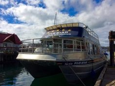 Supercat is ready! - Five Star Whale Watching Super Cat, Five Star, Whale Watching, Boat, Stars, Dinghy, Boats, Star
