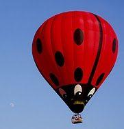 Hot air Lady Bug Balloon....