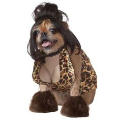 The Dog Halloween Costume Shop Lets You Dress Your Dog Like a Celeb #petcosplay trendhunter.com