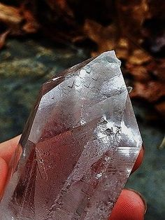 **RECORD KEEPERS**ET Handholder Arkansas Quartz Crystal Point, Warrior
