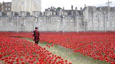 Yeoman Serjeant Bob Loughlin walks through a mass of ceramic poppies at the Tower of London.