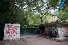 Ecos de libertad: AYOTZINAPA,    ¿Qué país es éste Guadalupe?
