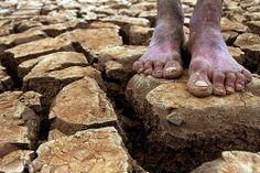 OGEOGRAFO: As maiores secas que o Brasil já teve veja:oterra.blogspot.com.br
