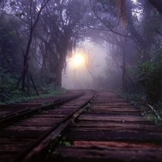 Abandoned train tracks.
