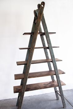 Old Ladder Bookshelf.
