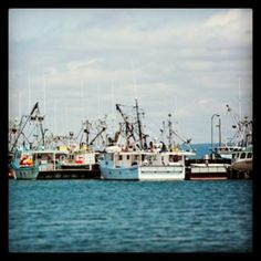 #Digby #NovaScotia #Fishing #Boat #Community #Fresh #Delicious #Maritime #Seafood #BayofFundy #DigbyPines #Resort #Picoftheday