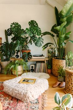 Creating a Jungle Record Corner Black Blooms Black Blooms Corner Creating Jungle - Room Decorations, Room Decor Bedroom, Bedroom Ideas, Bedroom Artwork, Bedroom Bed, Jungle Bedroom, Jungle Nursery, Art Rooms, Ramadan Decorations