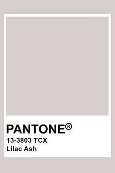 Pantone Lilac Ash Pantone Swatches, Color Swatches, Pantone Colour Palettes, Pantone Color, Colour Pallette, Colour Schemes, Paleta Pantone, Purple Aesthetic, Colorful Interiors