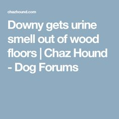 Downy gets urine smell out of wood floors | Chaz Hound - Dog Forums