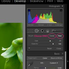 Good tutorial for using the spot healing tool in Lightroom 3.