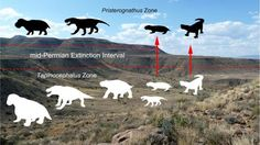 Karoo reveals mass extinction around 260 million years ago | Geology Page