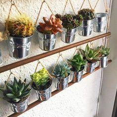 suculentas - Flower Garden İdeas İn Front Of House House Plants Decor, Plant Decor, Hanging Plants, Indoor Plants, Inside Garden, Decoration Plante, Succulent Care, Balcony Garden, Cacti And Succulents