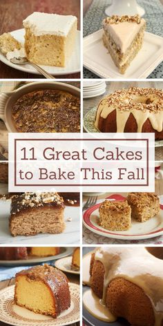 Get baking this fall with these 11 recipes for fantastic fall cakes! - Bake or Break ~ http://www.bakeorbreak.com