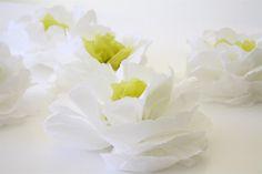 Paper napkin magnolias.