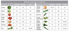 sembrando dos hortalizas caseras - Saferbrowser Yahoo Image Search Results