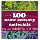 Over 100 Basic Sensory Materials You Probably Have at Home