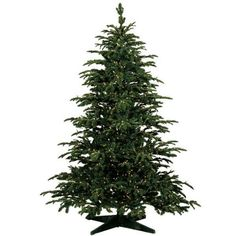 10 ft. x 77 in. - Star Fir - 4036 Realistic Molded Tips - 1100 Clear Mini Lights - Barcana Artificial Christmas Tree #Christmas