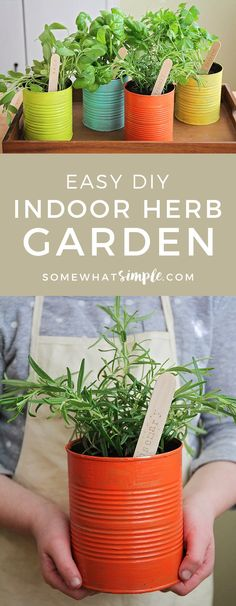Indoor Vegetable Gardening This easy to make indoor herb garden is the perfect project to do with the kids. Add a touch of green to your kitchen and enjoy fresh herbs year round! Indoor Vegetable Gardening, Container Gardening, Organic Gardening, Gardening Tips, Gardening Services, Gardening Quotes, Gardening With Kids, Herb Garden Indoor, Kitchen Gardening