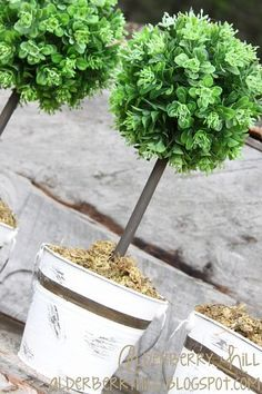 DIY: Cottage Chic Topiaries