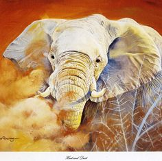 Heat and Dust - by Pollyanna Pickering