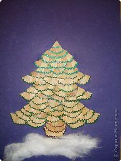 Spruce pencil shaving tree