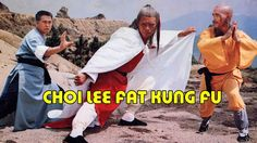 Wu Tang Collection: Choy Lee Fut
