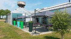 #hotellibera#parasol#olivier#restaurant#caen#normandie#cielbleu#terrasse#platdujour
