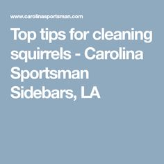 Top tips for cleaning squirrels - Carolina Sportsman Sidebars, LA