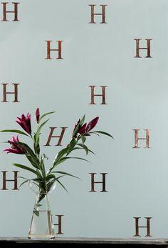 Image result for zilmer Wallpaper