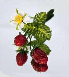 Turova_Strawberries