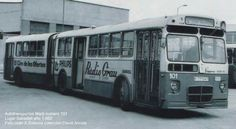 "Autobuses ""gusano"""