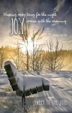 Joy in the morning...Psalm 30:56